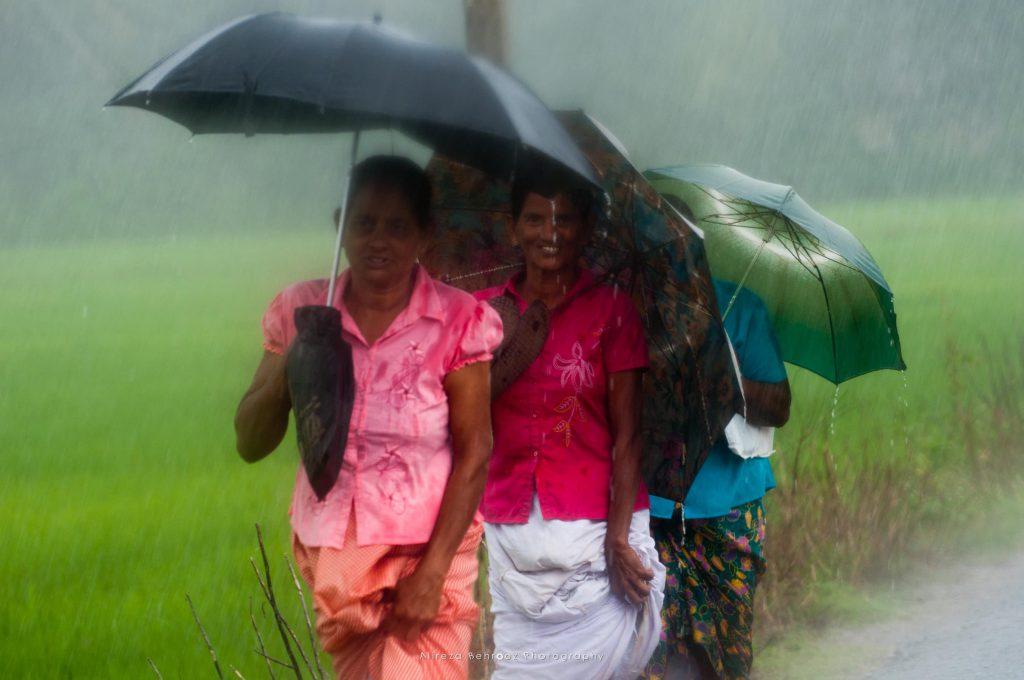 Rainy life