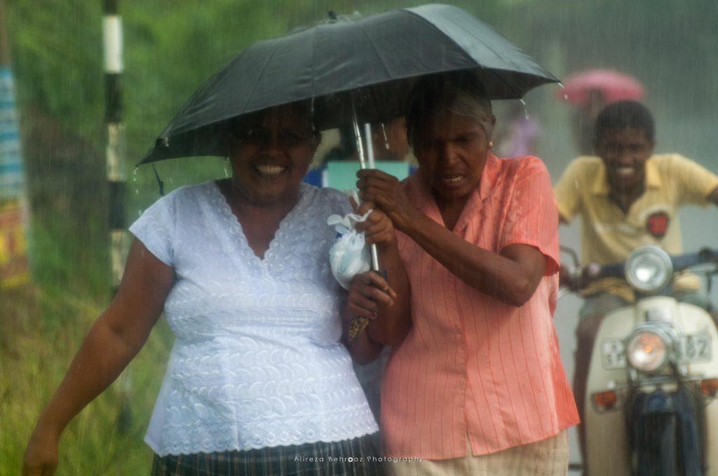Rainy life II