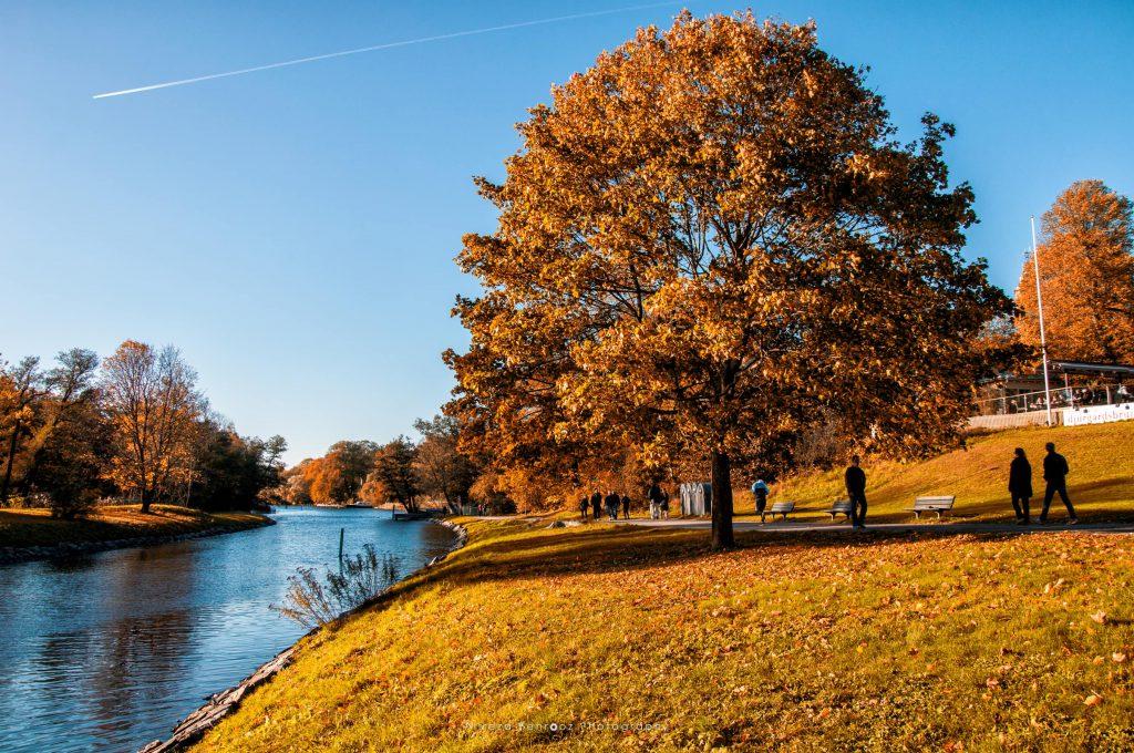 Autumn at Djurgården