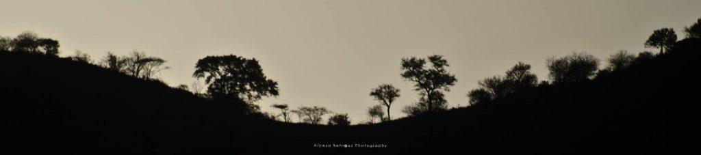 Tsavo West hills