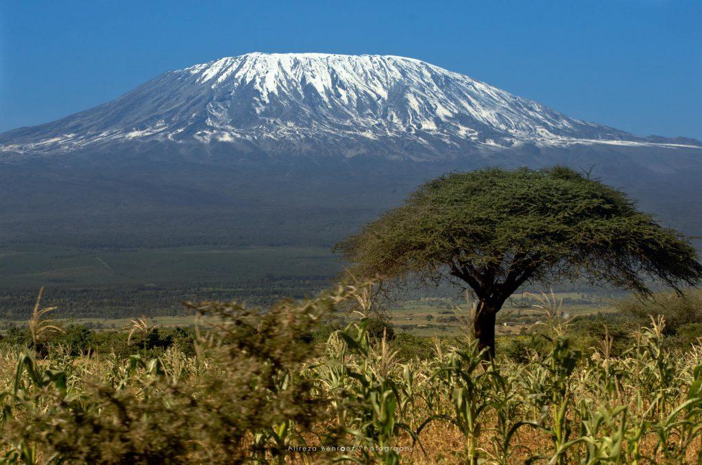 Mount Kilimanjaro II