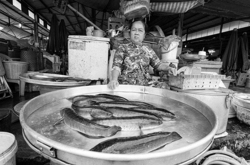 Chợ Tân An fish market, Southern Vietnam