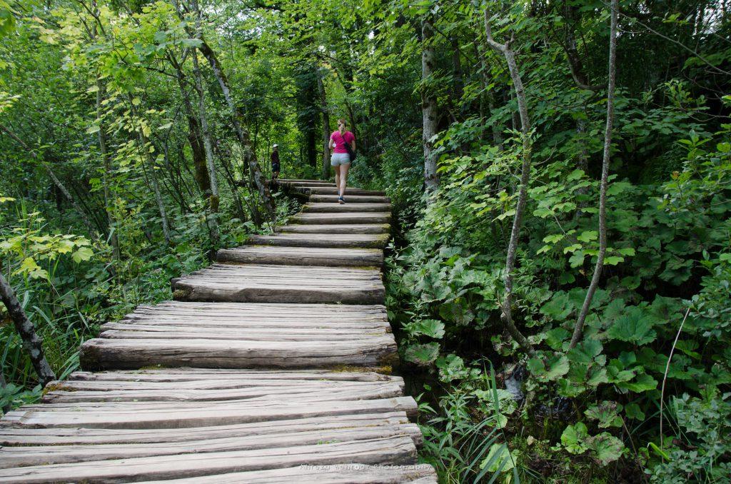 Into the woods, Plitvice national park, Croatia